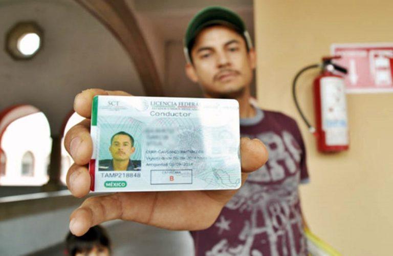 se suspende el trámite de licencias federales
